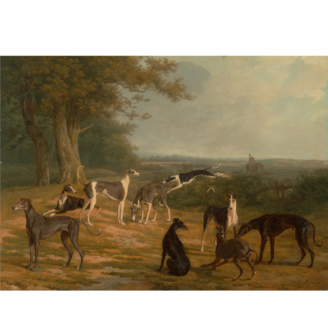 Pocztówka Sighthounds in Art No. 4